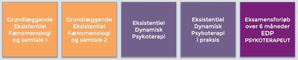 psykoterapeutuddannelse overblik