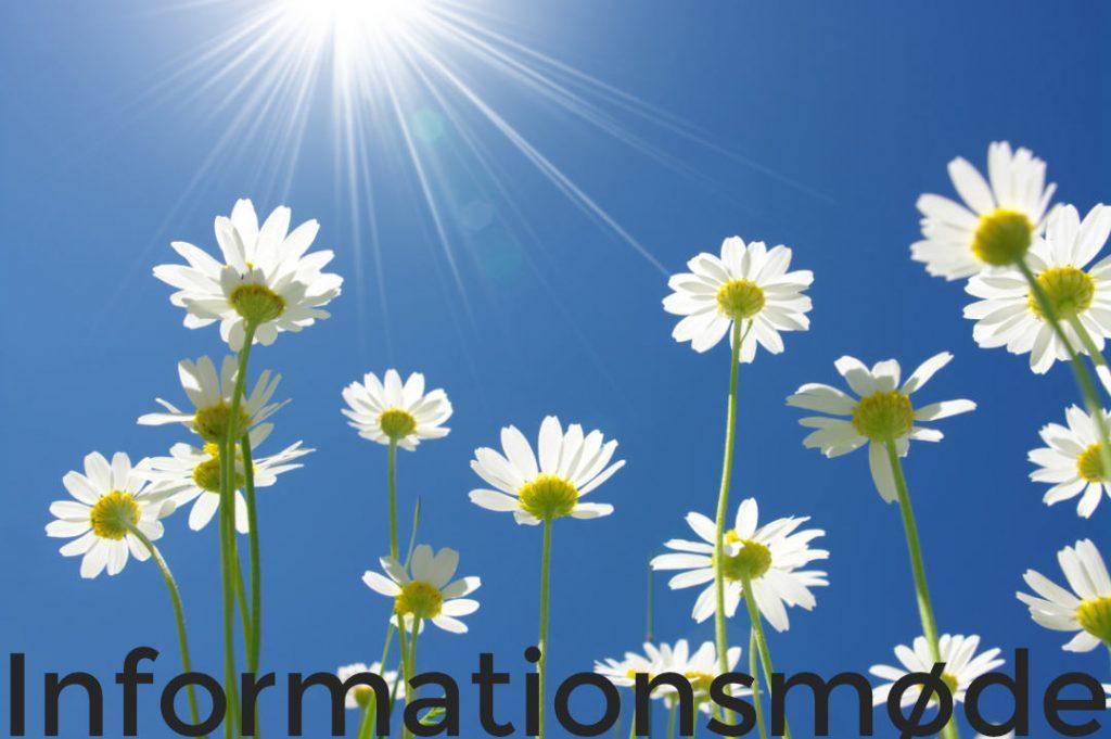 informationsmøde blomster