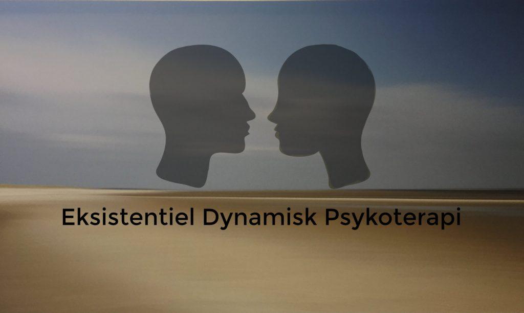 evalueret psykoterapeutuddannelse