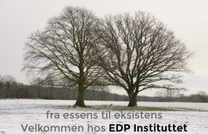 EDP Instituttet